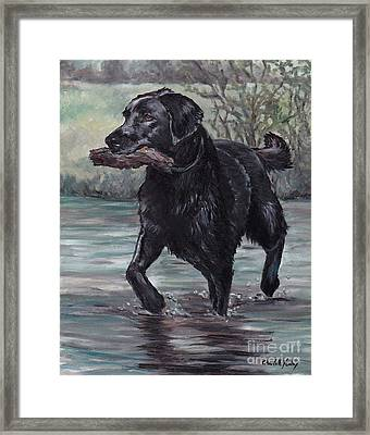 Fetch Framed Print by Charlotte Yealey