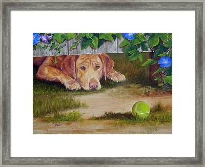 Fetch It Framed Print