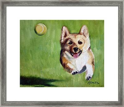 Fetch Framed Print by Mary Sparrow