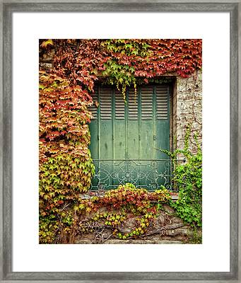 Fete Des Saisons Framed Print by Studio Yuki