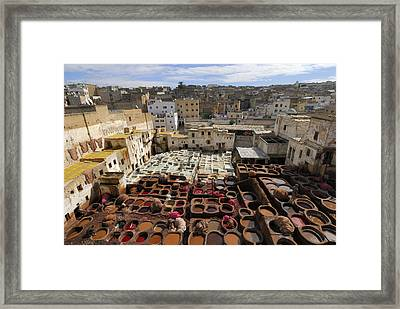 Fez Morocco Framed Print by Liz Pinchen