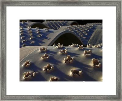 Fiberglass Wounds Framed Print by Edan Chapman