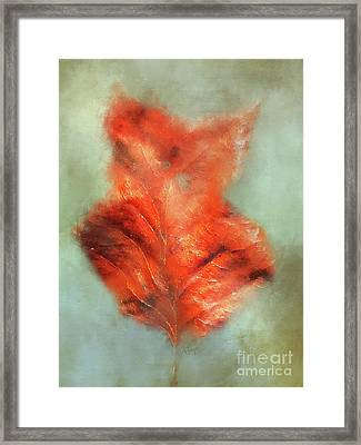 Fall Fiddle Framed Print by Anita Faye