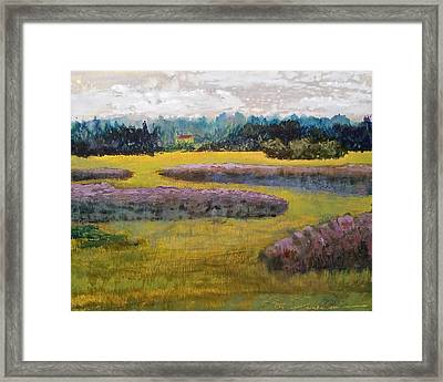 Fiddlers Ridge Marsh Framed Print by Peter Senesac