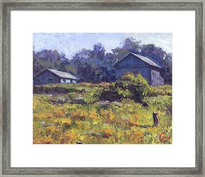 Field, Barn, And Shed Framed Print