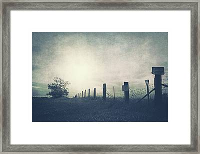 Field Beyond The Fence Framed Print