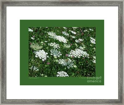 Framed Print featuring the photograph Field Bouquet-iv by Patricia Overmoyer