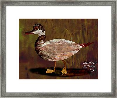 Field Duck Framed Print by Jerry White