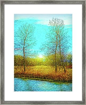 Field In Morning Light Framed Print