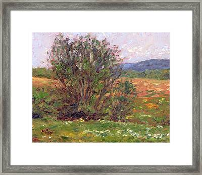 Field In Spring Framed Print by Michael Camp
