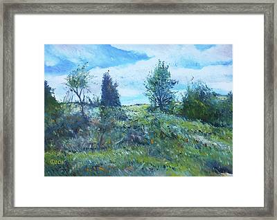 Field In The Langeberg Western Cape South Africa 2016 Framed Print