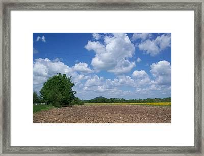 Field Framed Print by Karen Thompson