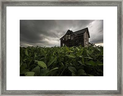 Field Of Beans/dreams Framed Print by Aaron J Groen
