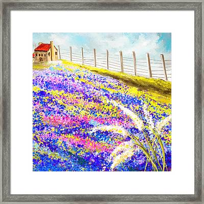 Field Of Blue - Bluebonnet Art Framed Print