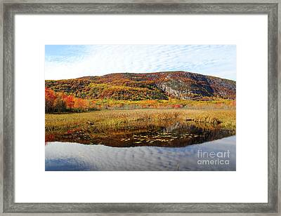Field Of Fall Splendor Framed Print