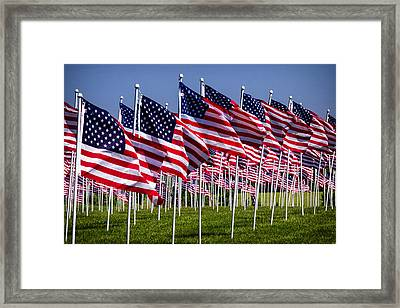 Field Of Flags For Heroes Framed Print