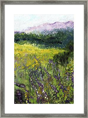 Field Of Flowers Framed Print by David Patterson