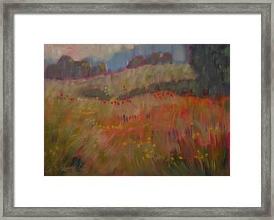 Field Of Flowers Framed Print by Len Stomski