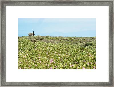 Field Of Flowers Framed Print by Michael Simeone