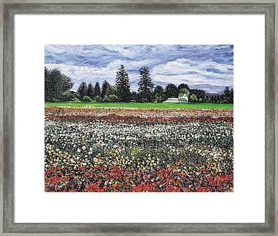 Field Of Flowers Framed Print by Richard Nowak