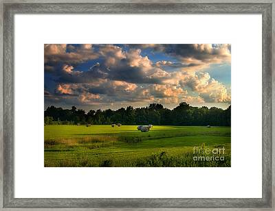 Framed Print featuring the photograph Field Of Grace by T Lowry Wilson