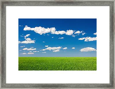 Field Of Grass Against A Perfect Blue Sky Framed Print by Todd Klassy