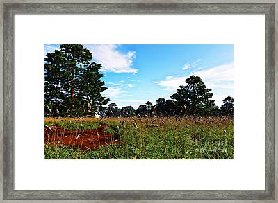 Field Of Grass Framed Print by Napo Bonaparte
