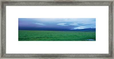 Field Of Grass Under Winter Storm Framed Print