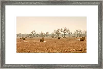 Field Of Hay Framed Print by James Steele