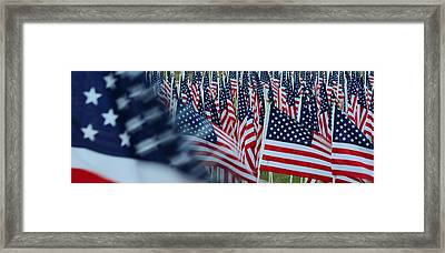 Field Of Honor - American Flags In Motion Framed Print by Matt Plyler