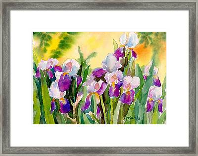 Field Of Irises Framed Print by Yolanda Koh