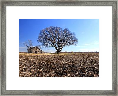 Field Of Past Dreams Framed Print by Christopher McKenzie