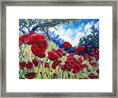 Field Of Poppies 02 Framed Print by Richard T Pranke