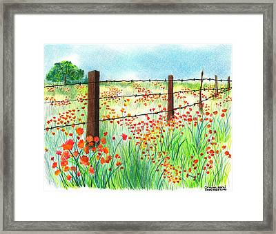 Field Of Poppies Framed Print by Sharon Blanchard
