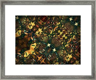 Field Of View Framed Print by Talasan Nicholson