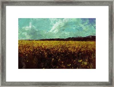 Field Of Yellow Framed Print by Mark Denham