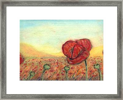 Field Poppies Framed Print by Robert Wolverton Jr