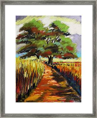 Field Road Framed Print