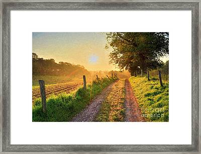 Field Road Framed Print