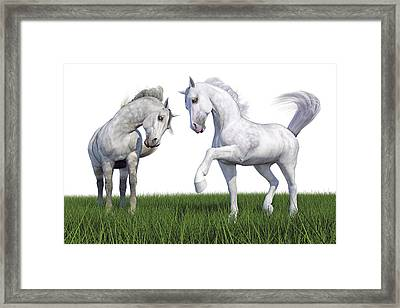 Field Training Passage Framed Print by Betsy Knapp