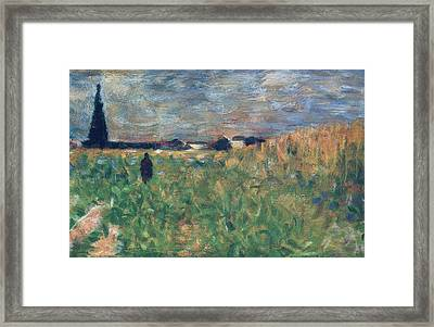 Fields In Summer Framed Print