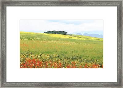 Fields Framed Print by Jan Hattingh