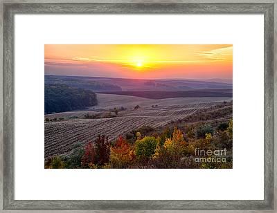 Fields Of Autumn Framed Print by Gabriela Insuratelu