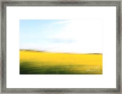 Fields Of Gold 97 Framed Print by Steffi Louis