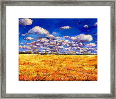 Fields Of Gold Framed Print by Johnathan Harris