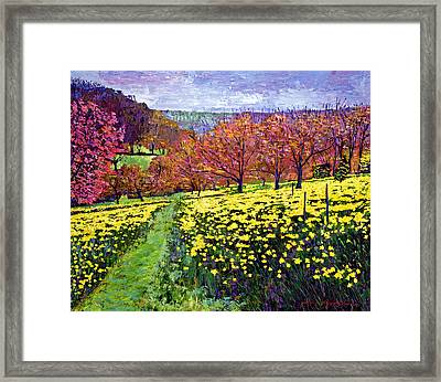 Fields Of Golden Daffodils Framed Print