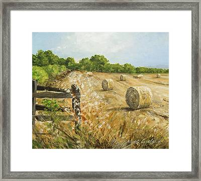 Fields Of Hay Framed Print by Marty Garland