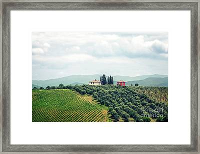 Fields Of Heavenly Delights Framed Print by Evelina Kremsdorf