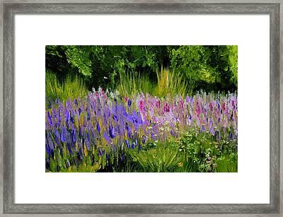 Fields Of Purple Framed Print by Lisa Konkol