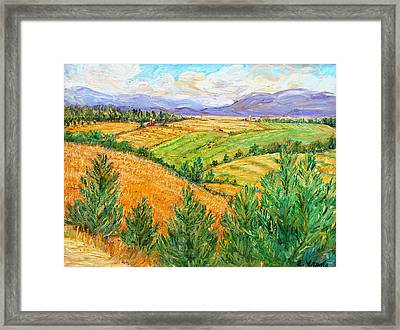 Fields Of Summer Framed Print by Ethel Vrana